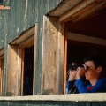 Greece, Thrace, Evros. Dadia forest, reserve's bird observation post