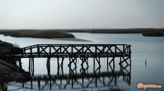 Greece, Thrace, river Evros delta