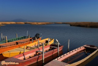 Greece, Thrace, river Evros delta. Flat bottomed riverboats (plava)