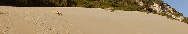 Kalogria, Beach