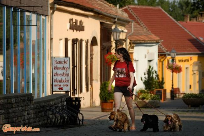 Hungary, Tokaj town, the main pedestrian and shooping street (Rakoczi ut)