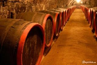 Hungary, Tokaj town, Rakoczi Pince wine cellar