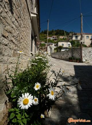 Greece, Peloponnese, Kosmas