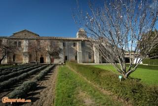France, Saint-Paul Asylum