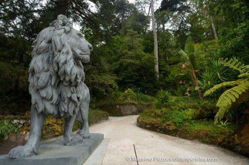 Il leone che accoglie all'entrata del giardino