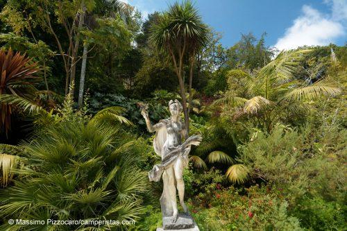 Un altro dettaglio del giardino delle meraviglie.