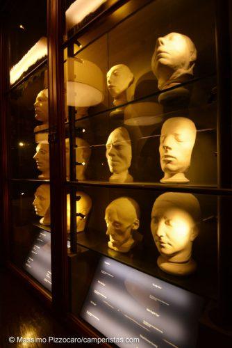 Nella biblioteca della galleria ci sono studi scientifici sulle caratteristiche della testa delle persone...